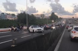 ninho-autoroute